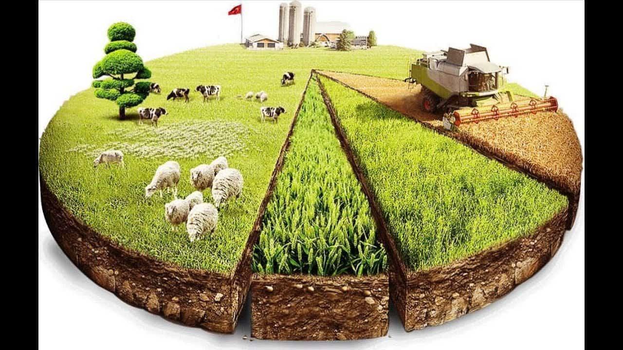 В каких случаях следует менять вид разрешенного использования земельного участка и как это сделать?